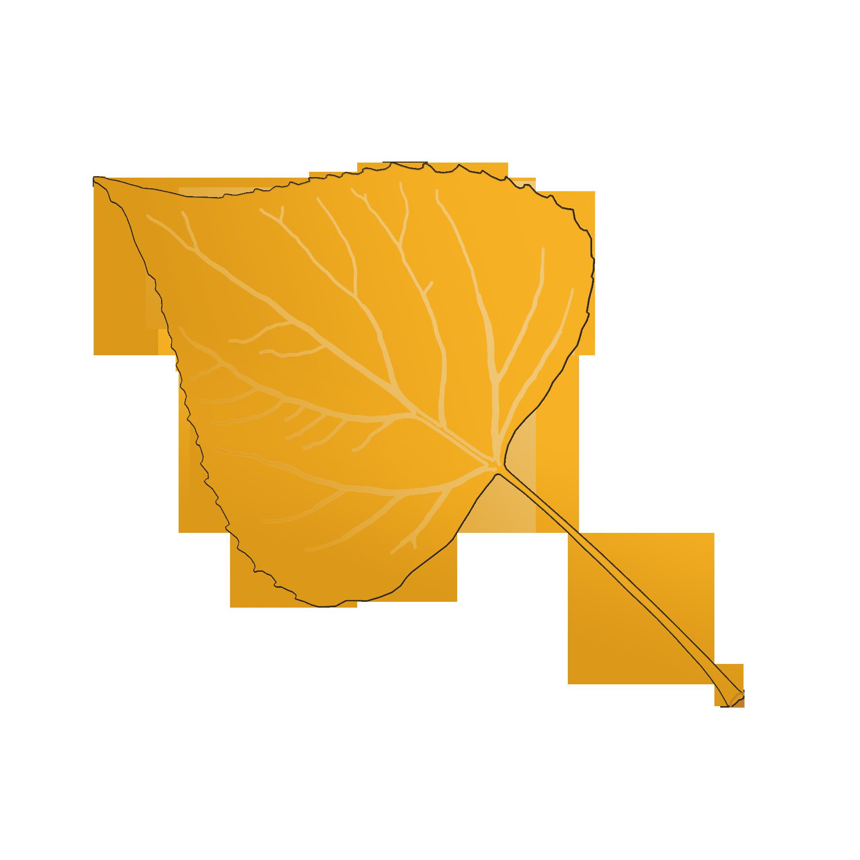 Картинки осень тополя